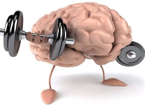 بدنسازی صحیح و ارتباط ذهن و عضله (MMC) - گروه تخصصی منتال پاور بادی بیلدینگ - مقاله