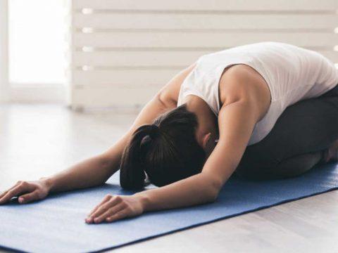 تمرینات فلو (Flow exercise (animal flow - روش تمرین - فیوژن فیتنس