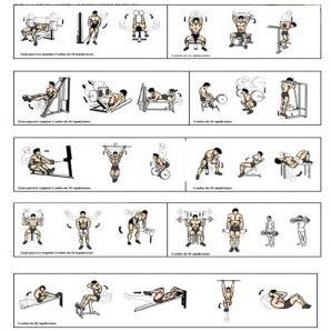 برنامه تمرینی 12 هفته ای