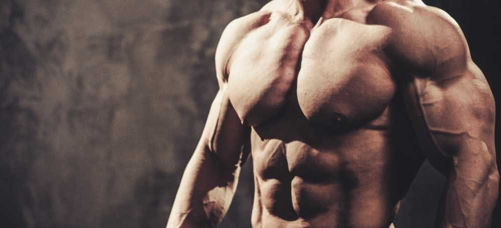 نحوه تمرین عضلات سینه در بدنسازی - روش تمرین