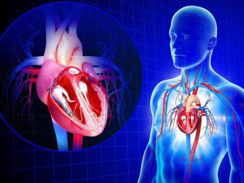 درمان تنگی دریچه میترال قلب - ورزش درمانی