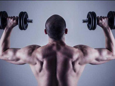 نکاتی برای ساخت شانه های کامل - روش های تمرین - عضلات سرشانه